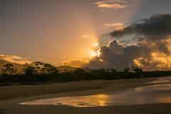 Tiny Walkers (Susan.Johnston) Tags: makenabeach maui sunrise hawaii beach clouds