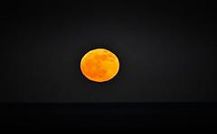 Full Moon over the Atlantic Ocean - Virginia Beach VA (mbell1975) Tags: virginiabeach virginia unitedstates us full moon over atlantic ocean beach va water sea usa night evening luna light moonlight