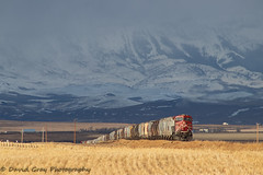 Lingering Darkness (Going Trackside Photography) Tags: canadian pacific railway canada grain remote dpu cp cpr rail railroad prairie mountain storm snow explore