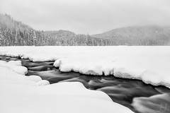 Winter Blanket (Joshua Johnston Photography) Tags: blackandwhite bnw pacificnorthwest pnw oregon sonya7iii longexposure winter snow landscapephotography