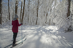 Bluebird Day (Matt Champlin) Tags: paige outdoors life highland forest woods winter amazing incredible ski skiing crosscountry canon 2019 home cny bluebird bluebirdday crosscountryskiing adventure red beautiful cold snow snowy sun woman women january