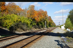 Color by the tracks (D. C. Wilson) Tags: fall autumn leaves yellow sunlight sky tree ground shadow cloud forest woods park reserve nature outdoor landscape train railroad taylorsville ohio sony