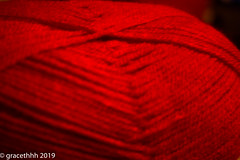 Floofy And Wooly - 016 (gracethhh) Tags: 365 365photo 365photochallenge 3652019 e red red365 red2019 redjanuary q w r t y u incredibles incredibles2 disney disneydvd gin lid fairylights color365 colour365 c car scooby scoobydoo doctorstrange frenchdoors photochallenge photochallenge2019 redracecar marieangedicosta glow ww strawberry strawberrystarburst shadows lego redandblue deadpool blue marvel january januaryred january2019 j jar mj p spiderman oo o bombs afol afol2019 xbox