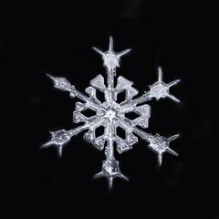 Sparkle (Margo Dolan) Tags: snowflake snow winter crystal ice frozen cold blackandwhite blackbackground outdoor macro extrememacro canonmpe65 ringflash 5div focusstack
