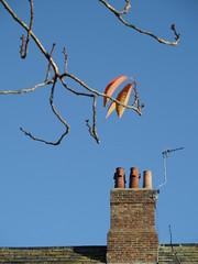Orange fingers (Nekoglyph) Tags: durham chimney pots orange tree blue branches leaves autumn bricks roof aerial tiles