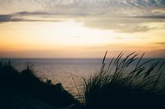 Edit -1-20 (Dane Van) Tags: holland michigan hollandmi puremichigan westside greatlakes greatlakesstate unsalted sunset dunes lakemichigan minolta xg1 minoltaxg1 film analog 50mm lomo800 lomography