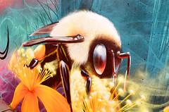 Beeutiful (Georgie_grrl) Tags: nicksweetman artist streetart graffiti mural nature animals gorgeous colourful beauty etobicoke adventureswithmary ontario pentaxk1000 analogrocks 35mmfilm rikenon12828mm