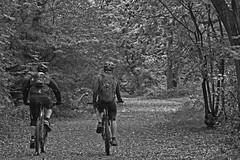 Monocycles (42jph) Tags: nikon d7200 uk england hayfield peak district mono bw black white cycle people cyclist nature trees derbyshire