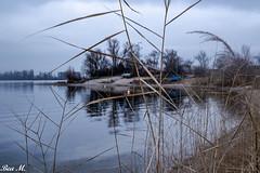 Still ruht der See (trixi.midik) Tags: 2018 dezember wandern winter see ruhe kälte landschaft stille stimmung