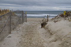 A Path Well Traveled (brucetopher) Tags: beach sea sand ocean atlantic shore coast coastal outside outdoor hike view travel newengland vacation fence fenced dune dunes sanddunes