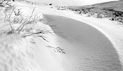 Grass struggles after heavy dump of snow - Howgills Fells - England (wooiwoo) Tags: cumbria england fell grass howgills sedbergh winder yorkshiredalesnationalpark