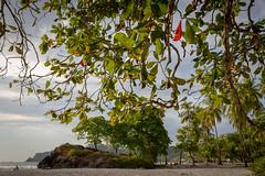 T92A4984 (Alex E. Proimos) Tags: costa manuel antonio national park playa rica