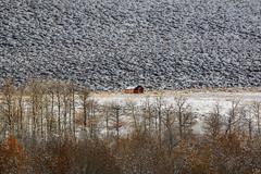 Conway Summit Cabin in Snow (Jeff Sullivan (www.JeffSullivanPhotography.com)) Tags: fall colors snow canon eos 70d 70300mm lens bridgeport landscape nature travel photography mono county eastern sierra california united states usa photo copyright 2015 jeff sullivan november