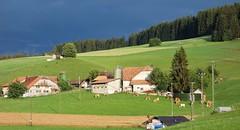 DSC05356 (ursrüegsegger) Tags: linden juli august getreideernte bauernhöfe landschaft regenbogen