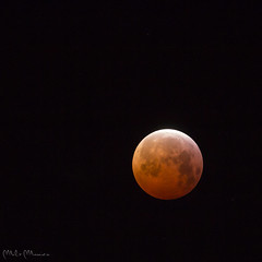 Luna rossa (Milo Manica) Tags: eclissi luna moon cielo sky taino italia italy canon eos 60d tamron 70300 treppiede manfrotto