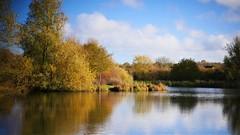Park lake (MKBirder) Tags: autumn miltonkeynes furztonlake