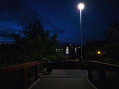 Walking at night (Noel1603) Tags: walk night dark bushes pavement trashbin rail telford streetlight