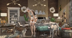 silver winter room (nicandralaval1) Tags: sk tlc salacity theloftaria aria decor decorate lovetodecorate maitreya lelutka 7deadlys{k}ins mesh bento gift advent adventcalendar silveryk architect buildersbox senseevent juju evie kinkyevent shoes entwined thesecretaffair meva newchurch fourthwall yasum sways thearcade silence gacha winter christmas keke uber ariskea pilot disorderly revival nutmeg dustbunny vespertine