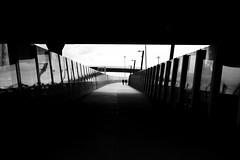Lost (maekke) Tags: auckland newzealand urban concrete streetphotography street humanelement man fujifilm x100f 35mm bw noiretblanc travelling silhouette thelightpath lightpath