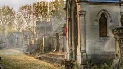 Ne m'oublie pas... (Fred&rique) Tags: lumixfz1000 photoshop raw hdr cimetière tombes sépultures moselle metz grandest ancien matin automne froid brume caveaux arbres