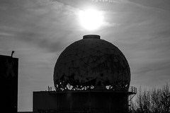 (Feininger's Cat (Thanks for 1.3 million views!)) Tags: leica summaritm50mmf24 leicam8 abandoned blackandwhite 50mmffequiv sun architecture apsh leicasummaritm12450 summarit summarit50 50mm leicam rangefinder messsucher ccdsensor