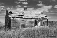 Of Times Gone By (kevin-palmer) Tags: november fall autumn nikond750 tamron2470mmf28 stxavier montana old abandoned house homestead wooden morning sunny clouds blackandwhite monochrome cabin grass