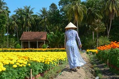 A Guide To The Mekong Delta, Vietnam (katalaynet) Tags: follow happy me fun photooftheday beautiful love friends