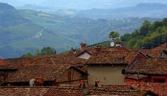 Morra 6 Langhe 18 (zanf89) Tags: lamorra neive alba langhe piemonte colline vino barolo nocciole