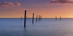 Sunrise at the Fishing poles (Johan Konz) Tags: sunrise mood fishingpole blue water waterscape seascape uitdam uitdammerdijk markermeer netherlands outdoor le longexposure nikon d7500 sea orange sky light cloud serenity vertical lines
