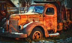International - Near Two Harbors MN (j-rye) Tags: truck rust grass snow international sonyalpha sonya7rm2 ilce7rm2 mirrorless goldenhour