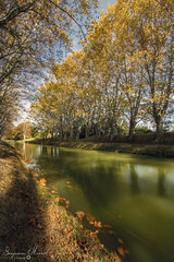 Robine Automne @Narbonne (Benjamin MOUROT) Tags: 1022mm 2017 7dmarkii 7dmkii benjaminmourot canon faguo france francia french landscape languedocroussillon lightroomcc nature photoshopcc poselongue architecture aude canal leefilter light longexposure monument narbonne nisifilter paysage polarised pov robine southfrance urbanisme view