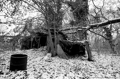 Ruthless nature (Drehscheibe) Tags: abandoned analogica nature nikonf nikkor20mm snow 35mm film hp5plus explore