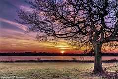 Winter Sunrise (_Jon Benham_) Tags: birminghamuk bartley reservoir water sunrise oak outdoors frost sky tree winter light hdr nature landscape trees colours cold dawn canon eos naturephotography landscapelovers sunrisesunset naturalbeauty colourful