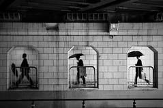Three frames (reiko_robinami) Tags: street streetphotography rain umbrella outdoors monochrome blackandwhite urban