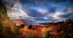 Late Fall Ocean Sunset (jarr1520) Tags: sky cloud sunset landscape seascape sun ocean sea water composite textured forest trees light