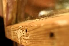 Kahvilla - Coffee Break (arcticbramble) Tags: kahvilakaneli window ikkuna peili mirrow wood puu kahvi tee coffee tea friendship ystävyys frame cafe