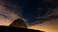 The tree and the stars (DM1410) Tags: stars night nightshot nightsky sky tree gallaxy clouds dark light backlight shadow contrast germany nikon d300 longexposure astro