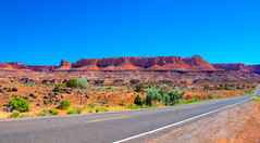 June 18, 2018-DSC_0909_J (Bert_T_TX) Tags: landscape desert utah arizona rock red moab bryce grand canyon arches sedona rocks sky blue flower sand rocky travel adventure colorado river road highway view viewpoint kodachrome colorful history old bees plants flowers arch window windows orange green