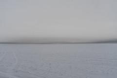 Solitude No. 3 (Marcin eM.) Tags: solitude wasteland sonyalpha7 sonya7 sonyα7 ilce7 winter snow podlasie śnieg pustkowie minimal