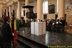 IMG_0992 (Patrick Williot) Tags: waterloo novembre centenaire armistice