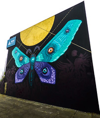 Ara - A Place to Find Your Wings (Steve Taylor (Photography)) Tags: ara art digitalart graffiti mural sign black blue purple yellow contrast white vivid newzealand nz southisland canterbury christchurch newbrighton insect moth cinzah otautahi prints lines street