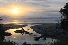 USA - Washington - Sunset on Kalaloch beach (mda'skaly) Tags: usa americanlandscape plage sand reflets reflections suenset coucherdesoleil sea mer sauvage lumière