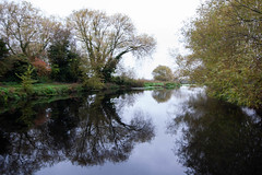 _DSC3014.jpg (Dave Simmonds) Tags: other canal tree river riversoar reflection boat water leicestershire