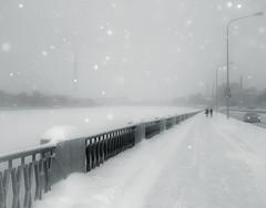 Snow flash (rsvatox) Tags: saintpetersburg strobe steet snowfall blizzard winter bright people city monochrome blackandwhite nocolor urban