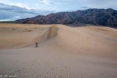 Mesquite Flat Sand Dunes at sunset. (SpyderMarley) Tags: california deathvalley mesquitedunes landscape sand usa isolation nature