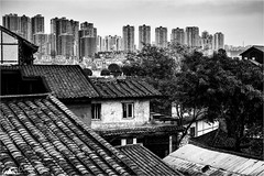 Over The Rooftops (Darkelf Photography) Tags: china asia city urban chongqing buildings architecture mono monochrome blackandwhite skyscrapers dwellings travel cityscape cloudy moody canon nisi 24105mm 5div maciek gornisiewicz darkelf photography overtherooftops 2018