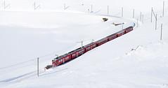 Snow clearing ABe4/4 3509_Ospizio Bernina, Switzerland_280118_01 (DS 90008) Tags: rhb abe44 3509 ospizio snowplough train bernina unit snow winter swissrailways