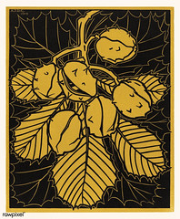Chestnut branch (1919) by JJulie de Graag (1877-1924). Original from The Rijksmuseum. Digitally enhanced by rawpixel. (Free Public Domain Illustrations by rawpixel) Tags: nam antique art artwork branch bud chestnut chestnutbranch detail drawing environment flora flower handdrawn illustrated illustration juliedegraag leaf name natural nature old outdoor park pdrijks petal plant publicdomain rijksmuseum sketch stem tree vintage woodcut yellow