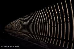 Le tunnel, Rond-Point de la Petite Merie, Saint-Cyr-en-Val (Ivan van Nek) Tags: letunnel rondpointdelapetitemerie saintcyrenval loiret orléans 45 abstract lowkey dark highcontrast whatever france frankrijk frankreich nikon nikond7200 d7200 tunnel corrugated onduléé derailinator centreval de loire architecture architektur architectuur