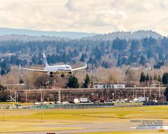 737-900ER Coming In to Land at PDX (AvgeekJoe) Tags: iflyalaska 737 737900 737900er 737990er alaskaair alaskaairlines boeing737 boeing737900 boeing737900er boeing737990er d5300 dslr internationalairport kpdx n477as nikon nikond5300 pdx portlandairport portlandinternationalairport aircraft airplane airport aviation jetliner plane